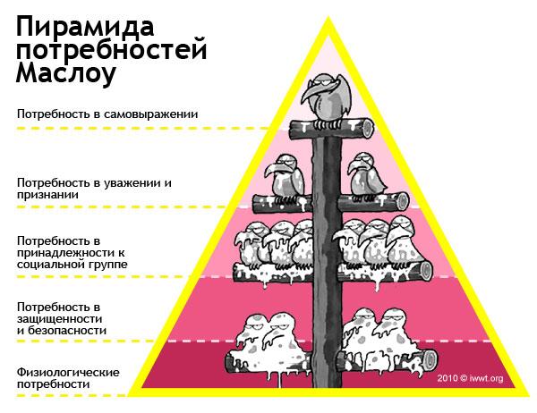 Секс по фрейду пирамида